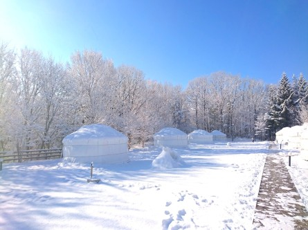 spring camp2